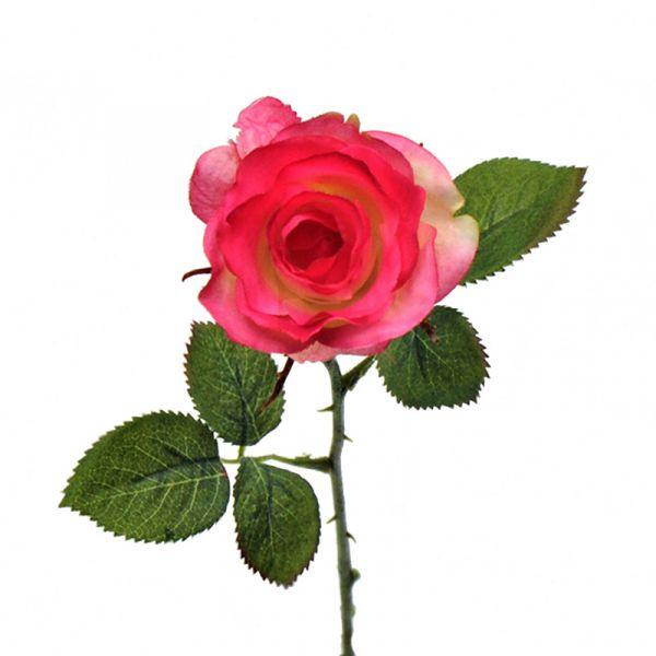 Rose Pink 36cm