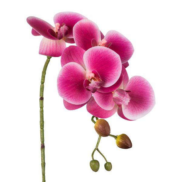 Phalaenopsis Orchidee Pink 42cm Real Touch bei Tischdeko-Shop.de