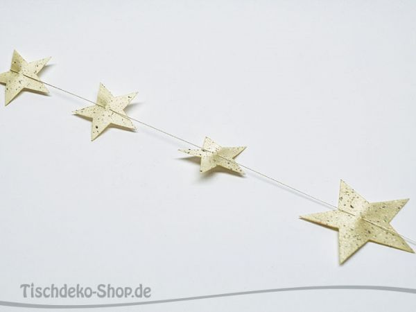 Sterne auf Draht Champagne 60cm
