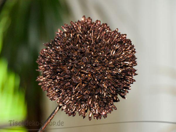 Kunstblume Allium Kupfer Blüte 10cm Länge 64cm