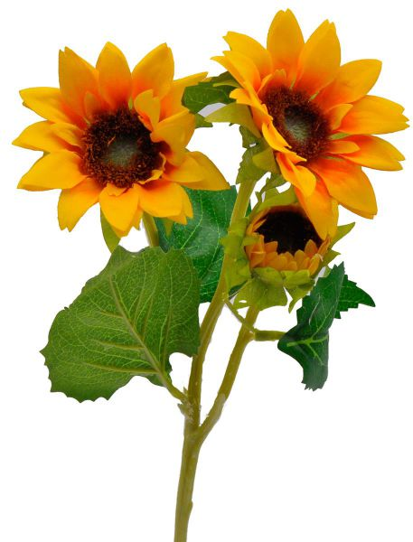 Sonnenblume 3 Blüten 37cm