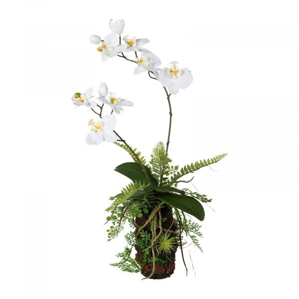 Orchideen-Farn-Arrangement 57cm Weiß bei Tischdeko-Shop.de