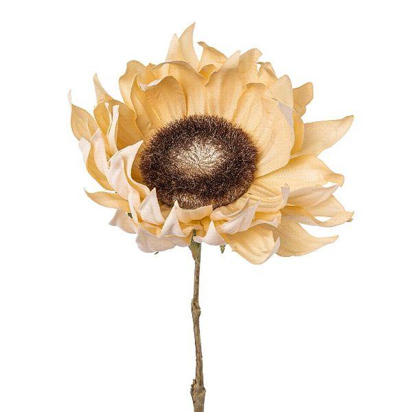 Sonnenblume Seidenblume Trockenblumen-Look Creme 58cm bei Tischdeko-Shop.de