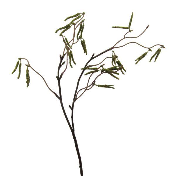 Birkenzweig Grün 53cm