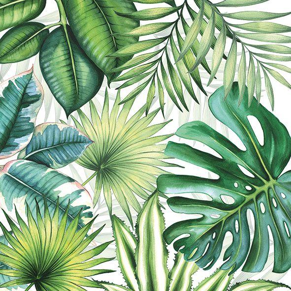 Serviette Tropical Leaves 33x33cm 20er Pack bei Tischdeko-Shop.de