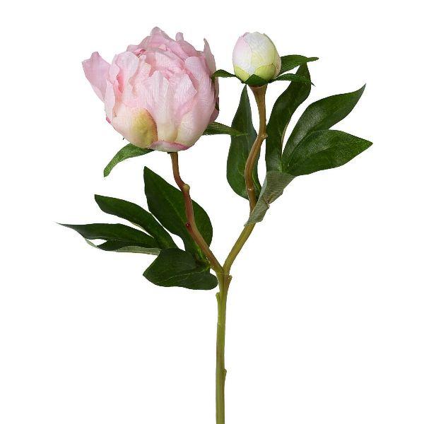 Pfingstrose Peonie mit Knospe Rosa Seidenblume  44 cm bei Tischdeko-Shop.de