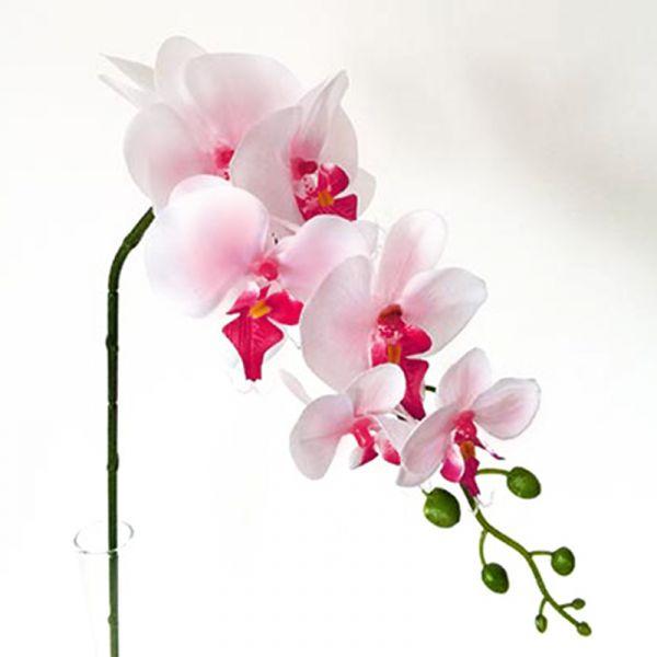 Orchidee Rosa / Weiß 86cm bei Tischdeko-Shop.de
