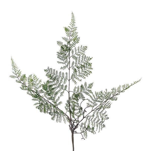 Farnbusch Grün 50cm