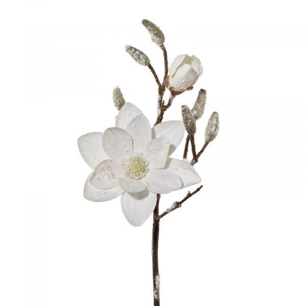 Magnolien-Zweig Weiß beschneit 45cm bei Tischdeko-Shop.de