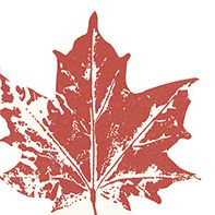 Serviette Maple leaf red 33x33cm 20er Pack bei Tischdeko-Shop.de