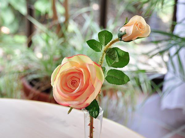 """Rose """"Romantic"""" mit 2 Blüten Apricot 52cm"""