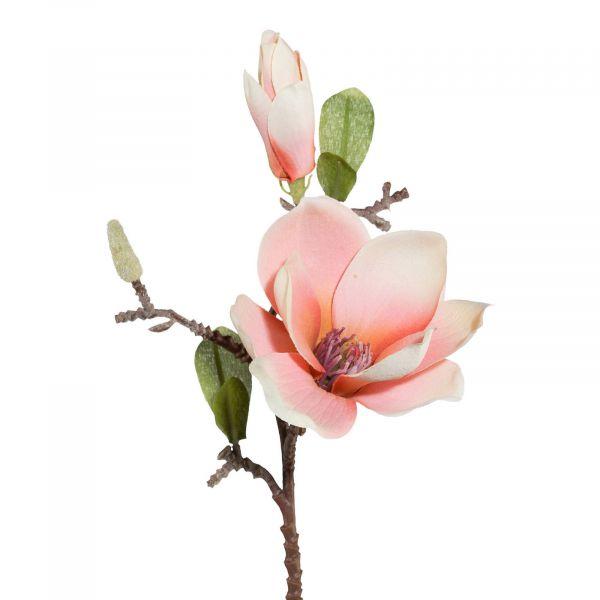 Magnolie Apricot 37cm bei Tischdeko-Shop.de