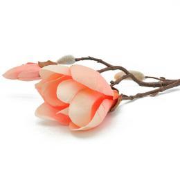 Magnolie Apricot 43cm