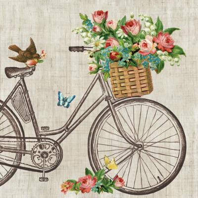 serviette-robin-on-bike-33x33cm-20er-pack