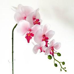 seidenblume-rosa-weiss-orchidee