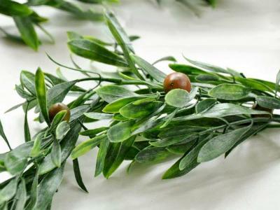 olivengirlande-fur-die-mediterrane-tischdekoration-180cm-3-10201