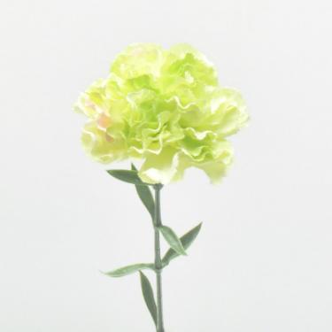 nelke-gruen-67cm-seidenblume