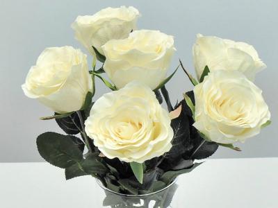 Rosen Weiß-Cream 42cm 6er Set Seidenblumen