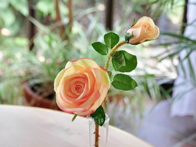 rose-romantic-mit-2-blueten-apricot-52cm