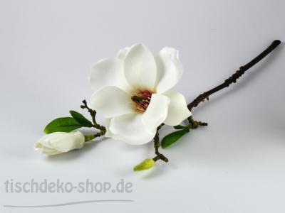 magnolie-weiss-37cm