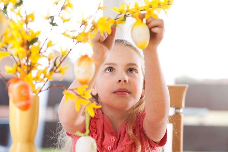 Maedchen schmueckt Forsythie zu Ostern