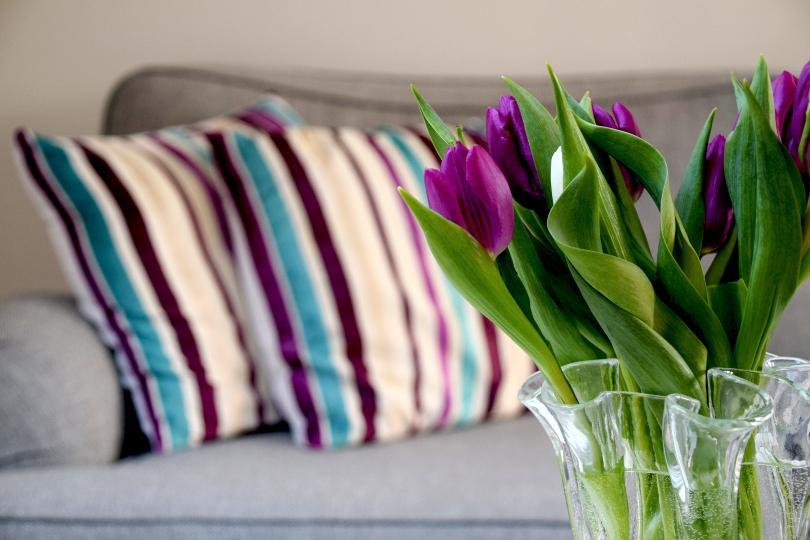 Tulpen im Vordergrund, Kissen im Hintergrund