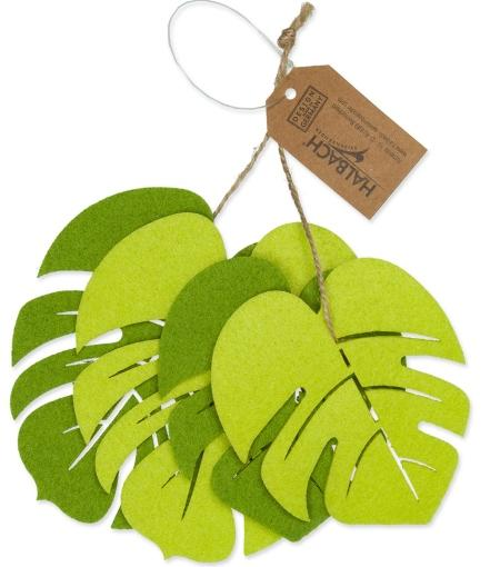 Filzsortiment Monstera 7.5-10cm Grün sortiert - Gartentisch dekorieren