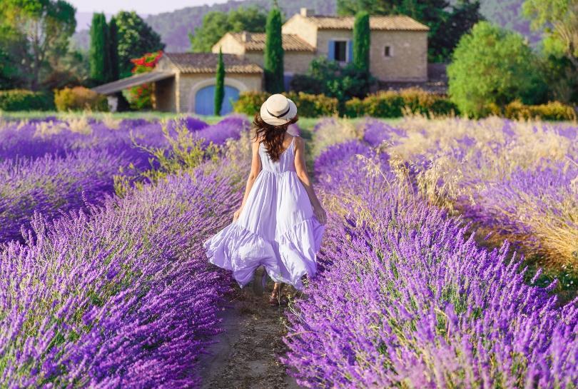 Frau läuft durch ein Lavendel-Feld