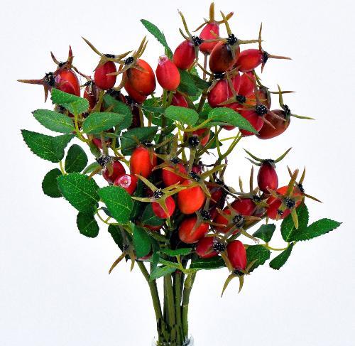 Hagebutten Zweige Rot Orange 6er Set