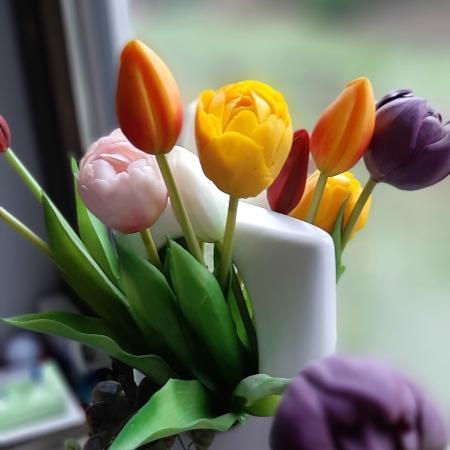 Tulpen Bunt Mix 39cm 7er Bund - Muttertagsgeschenke